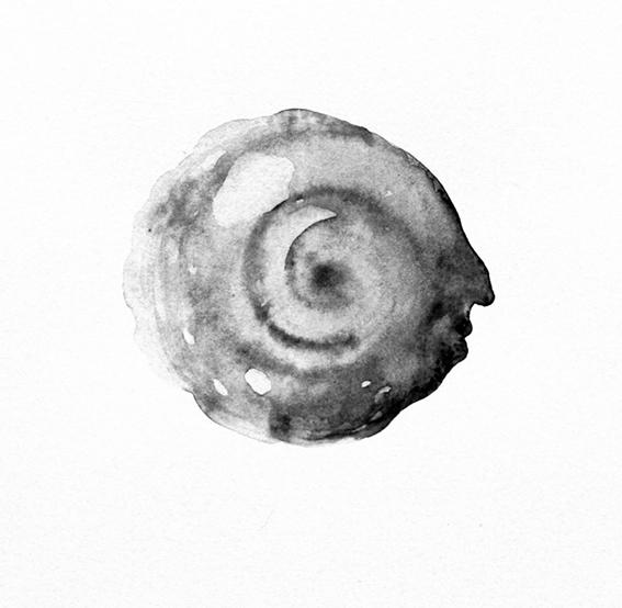 Spirale-copia-x-statement su sito
